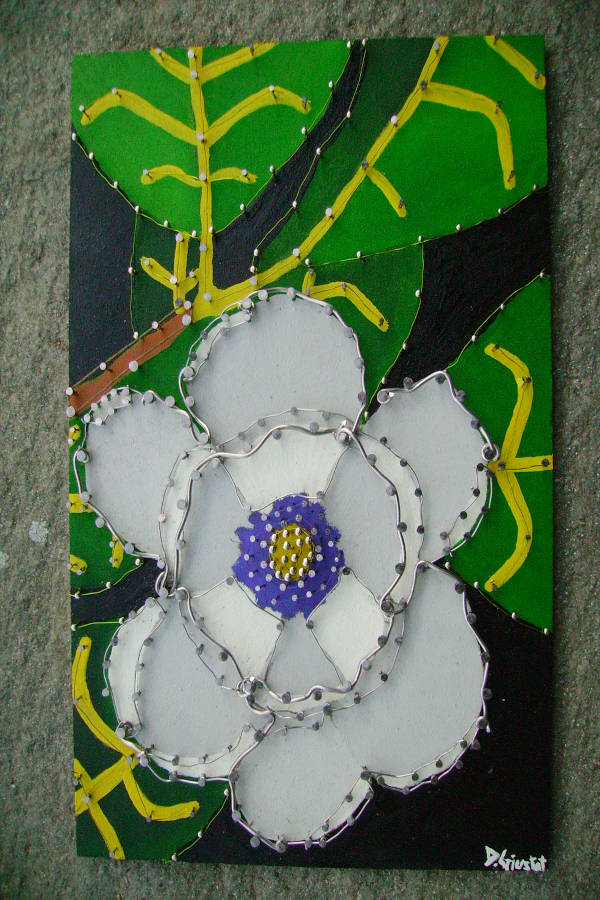 """Un fiore di """"Magnolia"""""""